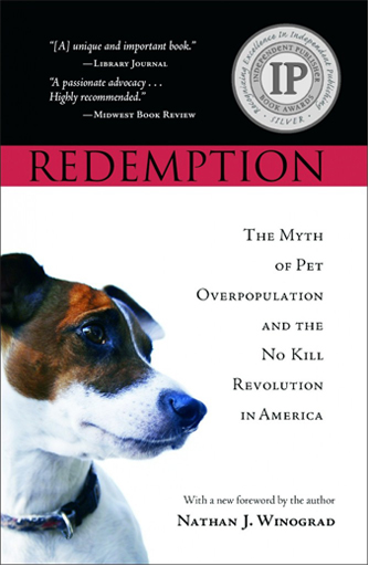 Redemption Cover DS