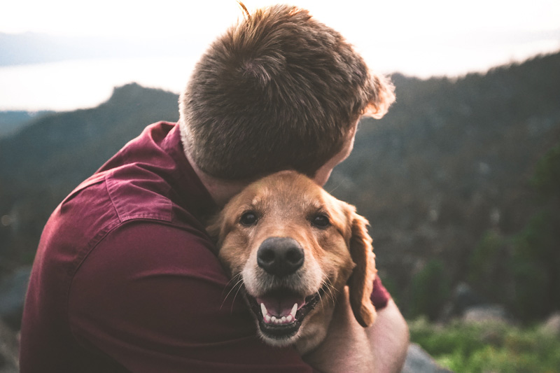 Man hugging dog